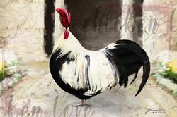 Rembrandt's Chicken