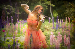 Serenade for Lupins
