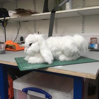 Finished Rabbit 3