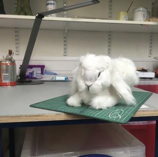 Finished Rabbit 1