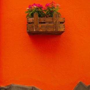 Orange. Acci Castello. Sicily. Copyright © JZeppelina
