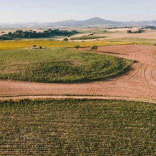 Over The Fields No1. La Bureba. Burgos. Copyright © JZeppelina