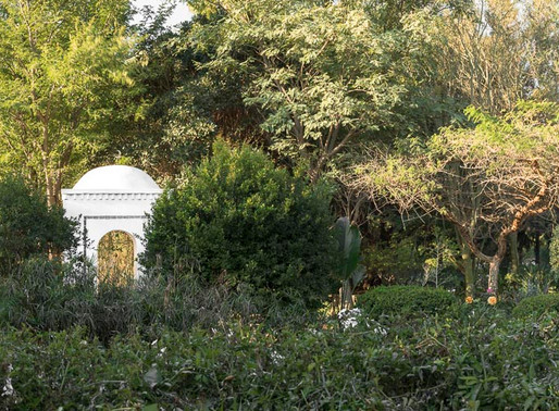 A letter from the garden at Temenos