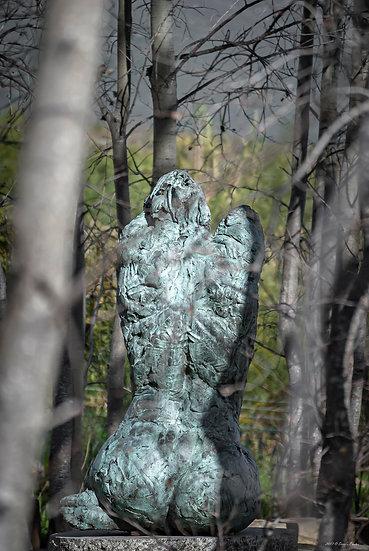 'Dylan Lewis Sculpture Garden 1'