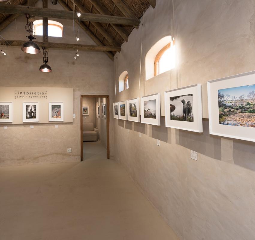 Dani's Photos solo exhibition at La Galleria in McGregor, South Africa