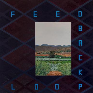 'Feedback loop 2' (2019) POA