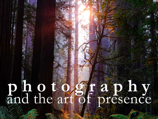 10 Sept - 12 Sept 2021 | Photography and the art of presence