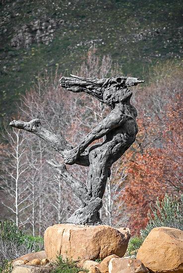 'Dylan Lewis Sculpture Garden 4'