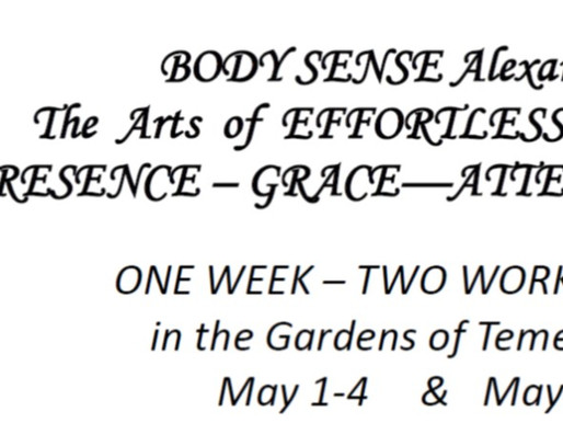 1-4 & 4-6 May 2018 | Body Sense Workshop Retreats
