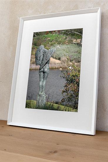 'Dylan Lewis Sculpture Garden 2'