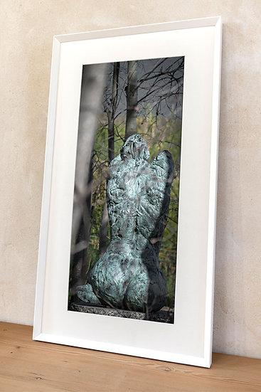 'Dylan Lewis Sculpture Garden 1' bis