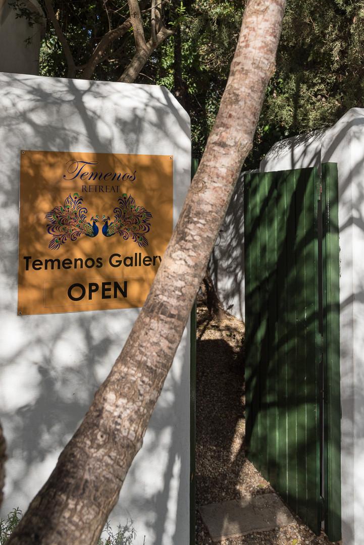 Tenenos Art Gallery
