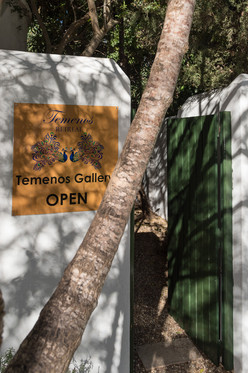 Tenenos Art Gallery