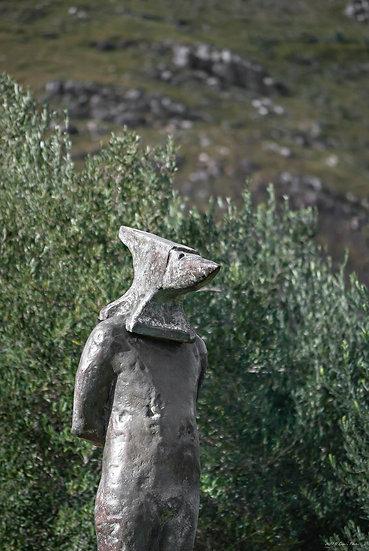 'Dylan Lewis Sculpture Garden 10'