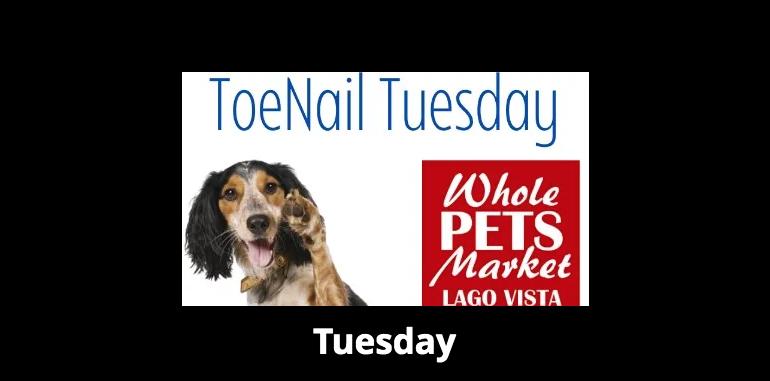 Toenail Tuesday at Whole Pets Market Lago Vista! Nail Clips for Tips!