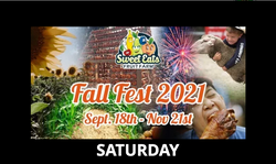 2021 Central Texas Fall Festival Corn Maze and Pumpkin Patch | Encore Sunflower Festival | Fireworks