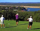 LV mens golf