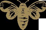 honey-bee1.png