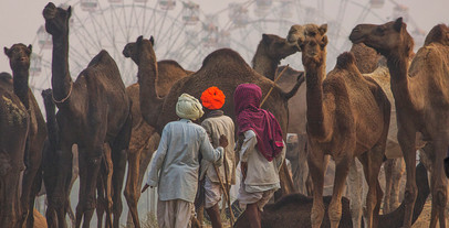 Pranab Ghosh (India) - PUSHKAR FAIR 2.jp