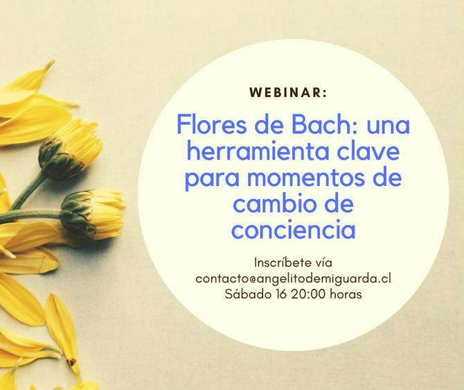 """Webinar """"Flores de Bach: una herramienta clave para momentos de cambio de conciencia"""""""