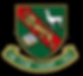 San_Silvestre_School_logo.png