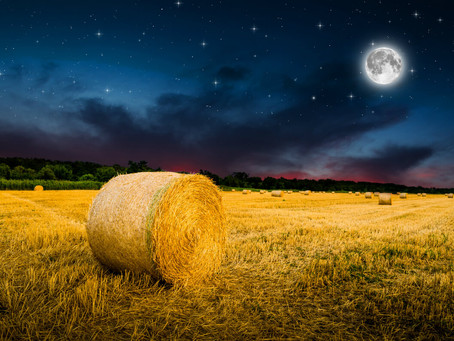 Tips To Master Your Energy During the Harvest Full Moon