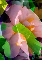 Abstrakte Blumen, romantisch, pastell, Original ganz neu 2021