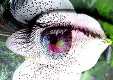 Aus meiner Reihe Mystery Eyes