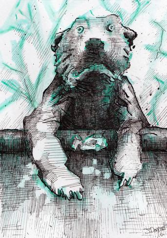 bear 2 1.jpeg