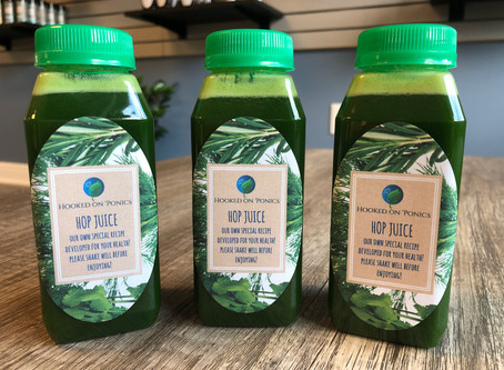 Brand New Green Juice Now Available!