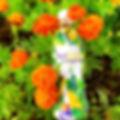 IMG_0604_1r2.jpg