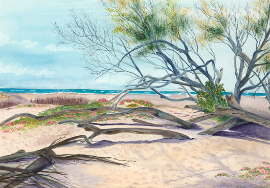 "#7 KAREN NEPHEW  ""Beyond the Trees"""