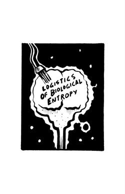 8: Logistics of Biological Entropy