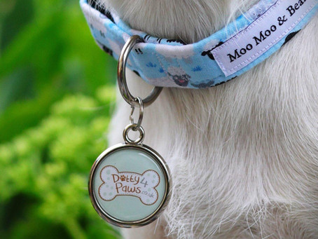 Pawesome Pet Tags partners with Dotty 4 Paws
