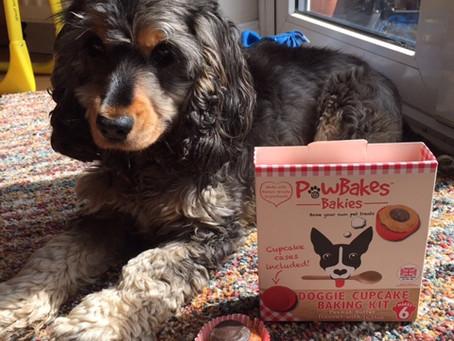 Baking dog treats at home (featuring PawBakes).