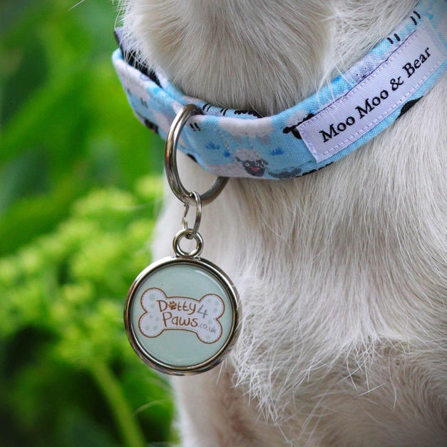 Dotty 4 Paws, Dog Directory