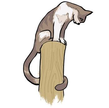 סיפורי סבא ספר ילדים ונוער - החתול זרם