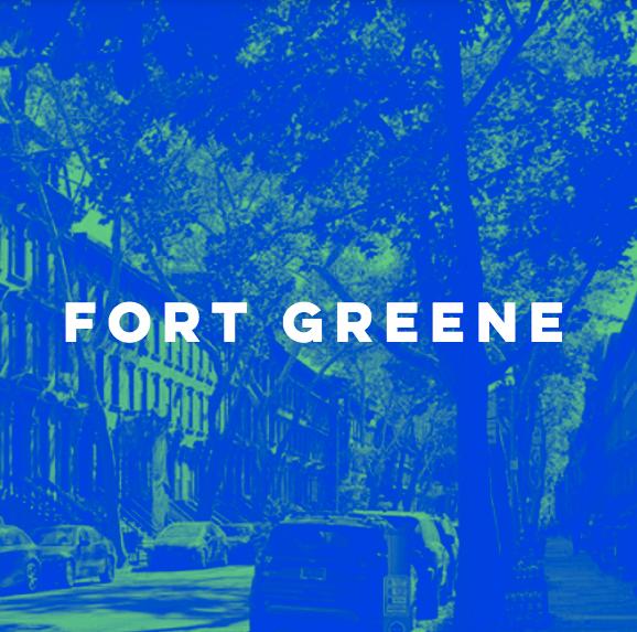 Fort Greene Summer Camp