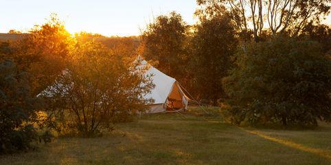 Leaf Bell Tent