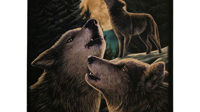 19X25CM WOLF SONG CANVAS PLAQUE BY LISA PARKER