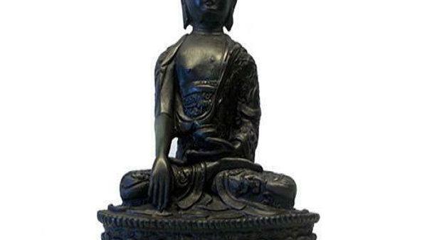 *Resin Statue Medicine Buddha 19cm