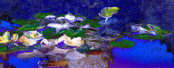 IMG_7109_edited-2.jpg