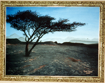 Terebinth Tree in the Sinai
