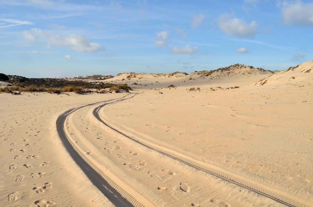 Nuestras huellas en el mundo no son siempre tan visibles como las podemos observar en la arena. Reflexión sobre la huella de carbono y su impacto.