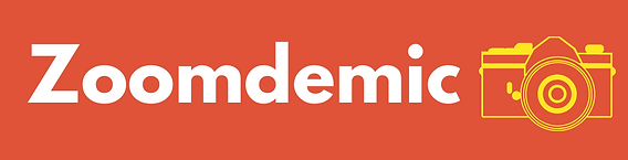 Zoomdemic banner.png