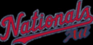 Nats team logo - ATL.png