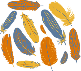Developed Feathers@300x.png