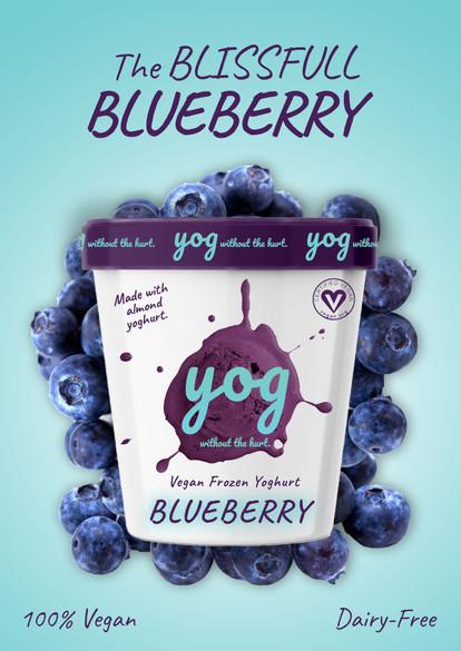 Blueberry Promo.jpg