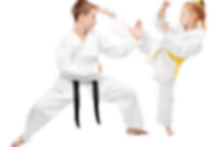 karate-einsteigerkurs-fuer-kinder-in-fre