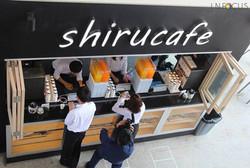 Japanese Shirucafe